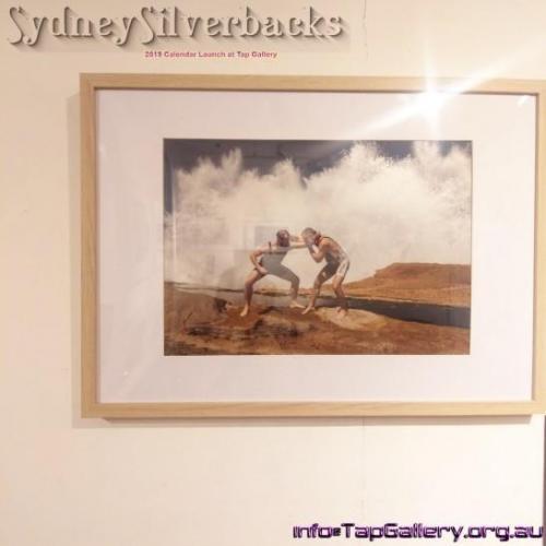 Sydney Silverbacks framed prints to launch 2020 calendar
